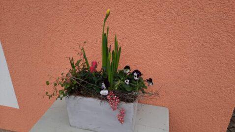 Frühlingsblüher Gefäß Blumendeko Berlin Rahnsdorf